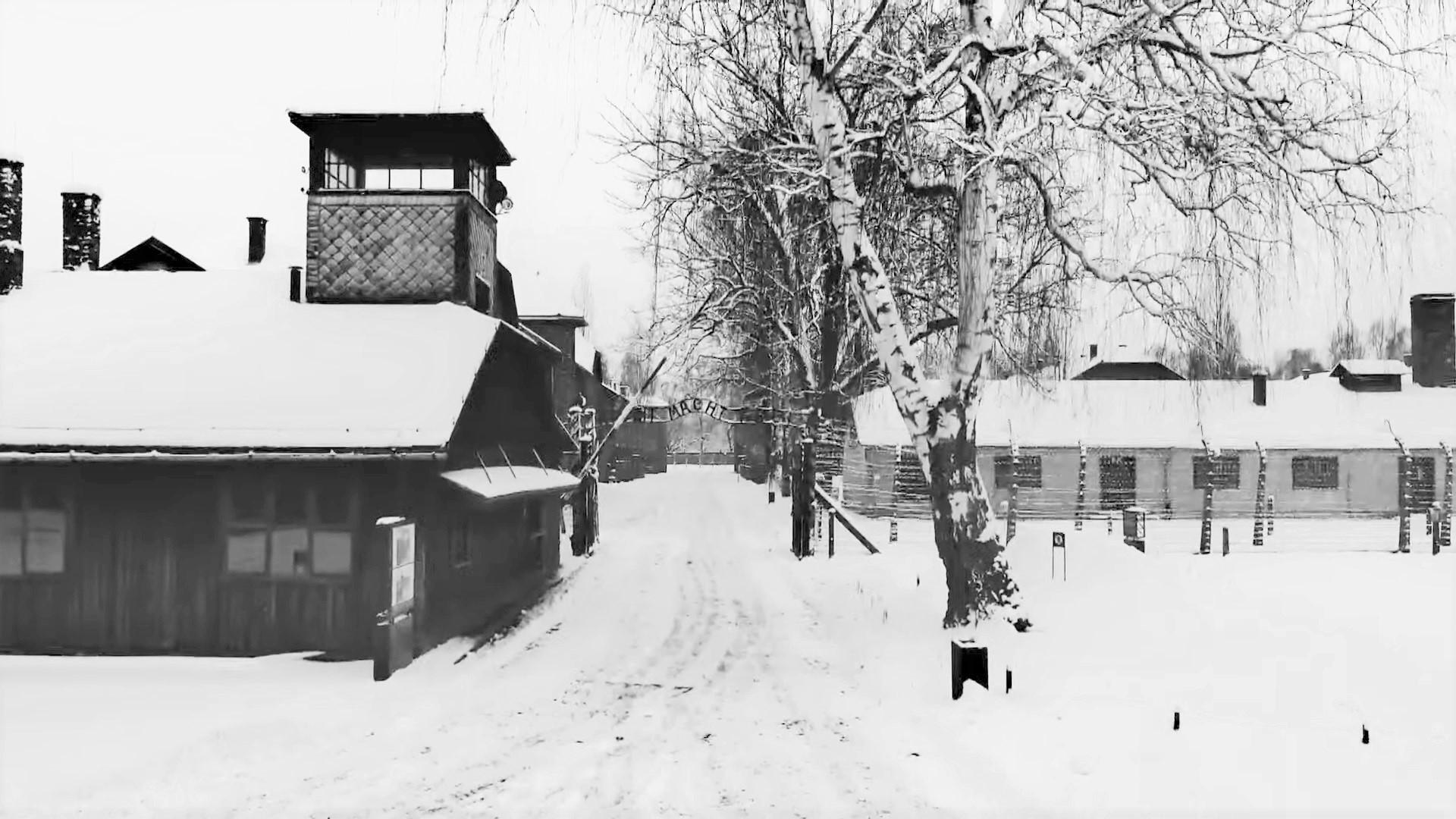 76. rocznica wyzwolenia KL Auschwitz-Birkenau