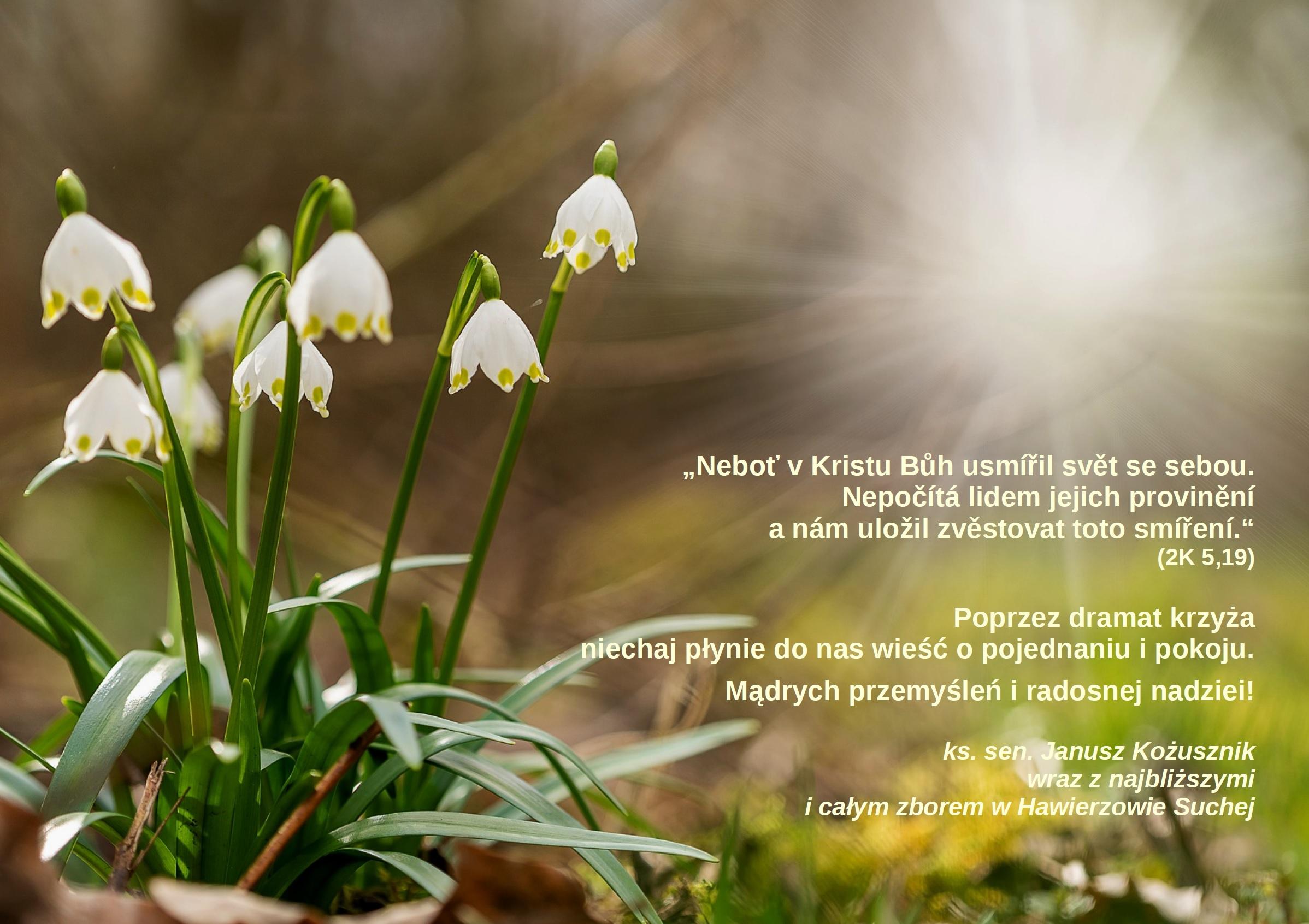Přání na Velký týden a Velikonoce – Życzenia na Wielki Tydzień i Wielkanoc